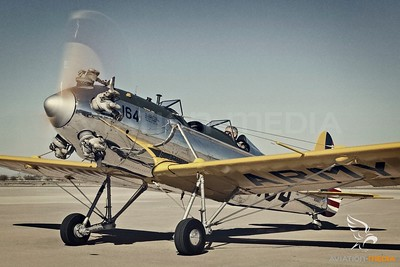 U.S. Army - Ryan PT-22 Recruit