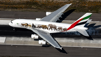 "Emirates / A380-800 / A6-EOM / ""United for Wildlife"""