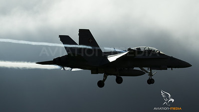 Swiss Hornet