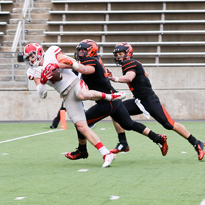 Cornell-Princeton football 2015