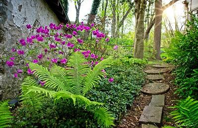 Spring House Path