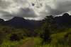 View of Kauai mountains from off the beaten track.