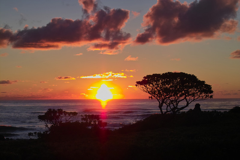 Monday, August 22nd, 2005:  Sunrise!  Another beautiful day ahead exploring Kaua'i.