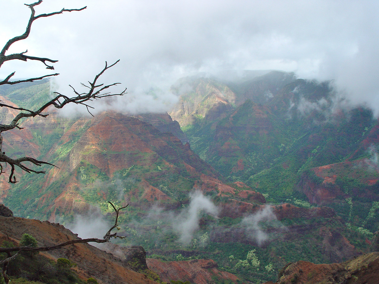 Another Waimea Canyon view.