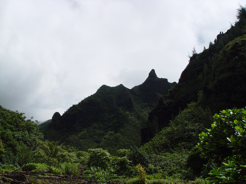 "Limahuli was the backdrop for many scenes from the movie, ""South Pacific""."