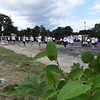 The Billerica Memorial High School band is in perfect alignment as seen from a distance during their performance on the last day of band camp. -- photo by Mary Leach
