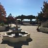 Santa Cruz Nov 2015