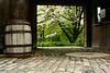 Tranquil scene, Longwood Gardens, PA
