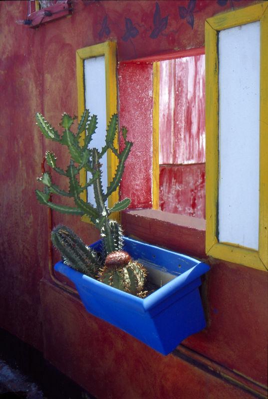 Colorful windowbox, Oranjestad, Aruba