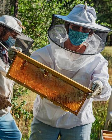Backlit honey comb