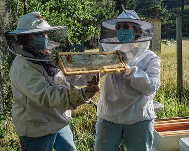 Thea and Claudine with a full tray of honey - food for the bees