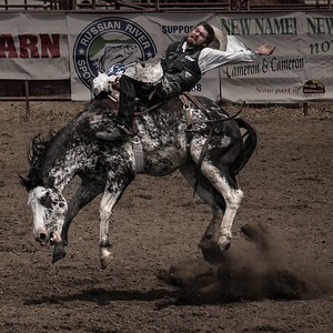 Bronco Rider - Russian River Rodeo