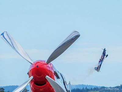 190929 WingsWine_wsa 001972 HD-1