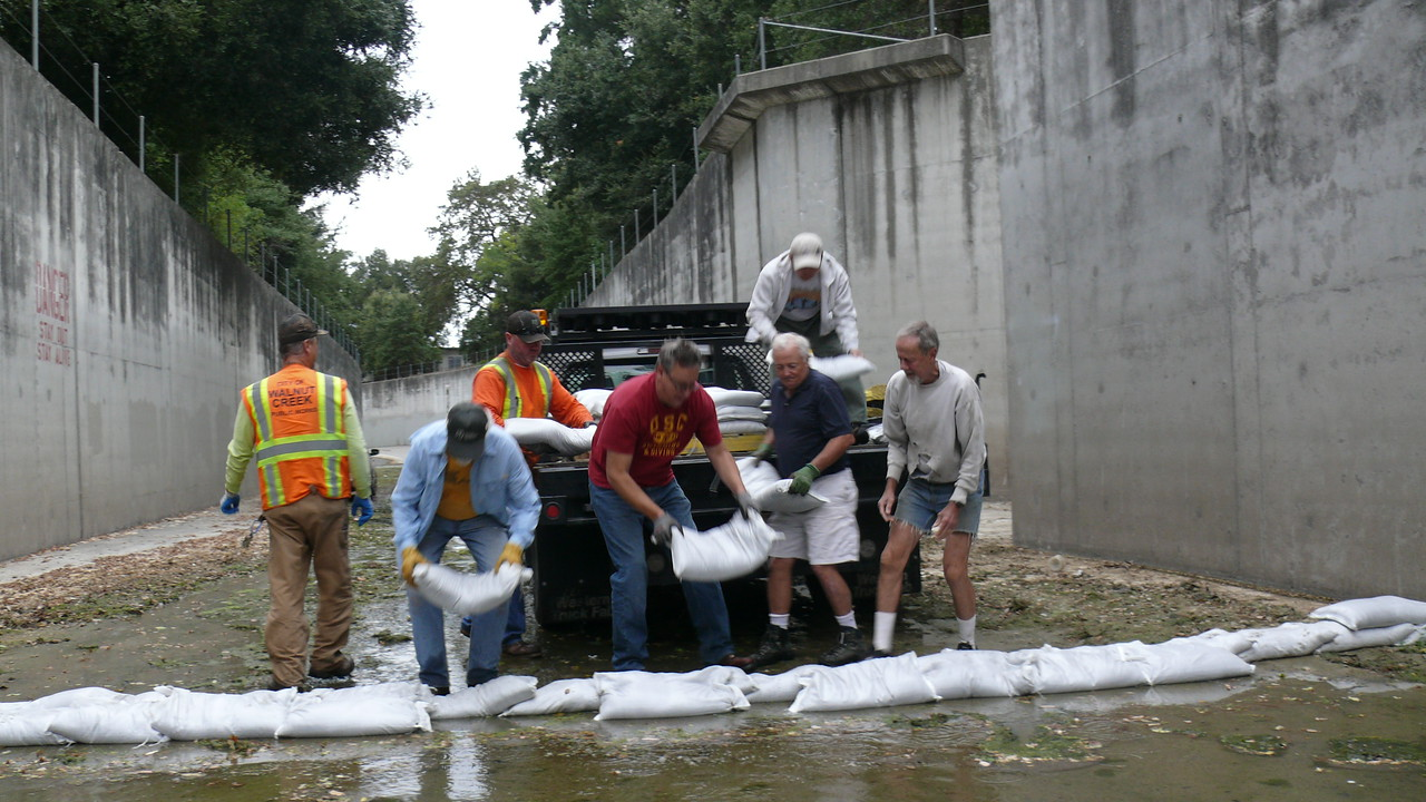 Lesley's projects often involve working with Walnut Creek and Contra Costa County staff and agencies like Flood Control and the Resource Conservation District.  This group is putting sandbags into the bypass channel in Walnut Creek to divert flow into the natural creek channel.