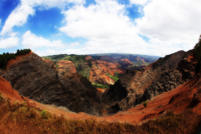 Hawaii0111