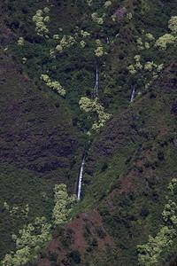 Hawaii0134