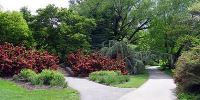 The gardens at Biltmore