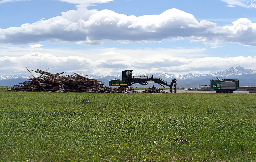 . A large pile of beetle kill timber, a log unloader and a shredder sit with the mountains in the background Tuesday, June 13, 2017, at Biochar Now in Berthoud. They use waste wood such as beetle killed pines and pallets and heat it in special kilns to make their biochar which can be used to make soil more productive, clean water and reduce odors. (Photo by Jenny Sparks/Loveland Reporter-Herald)