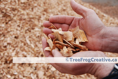 [007] Wood Chips