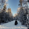 Duck Mountain Provincial Park, Sask, my sled on a snow day