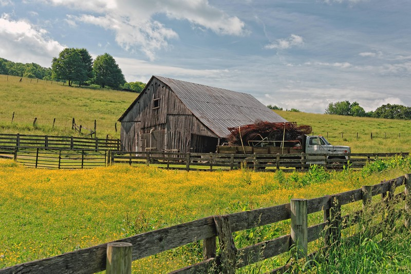 Old Barn and Truck, Hwy 113