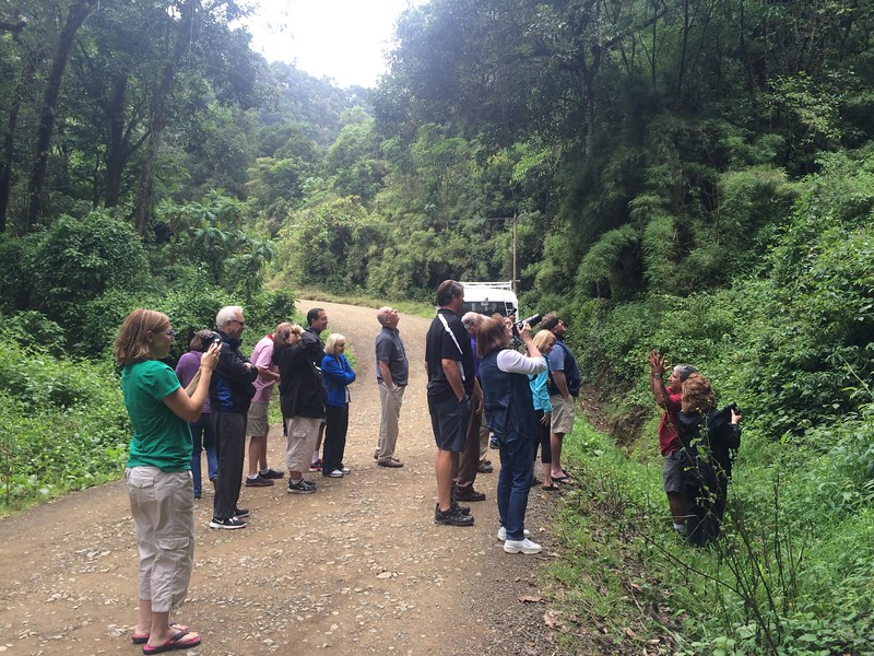 Seeing a Quetzal on the way into the valley.