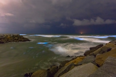 Southern California Bioluminescent Red Tide