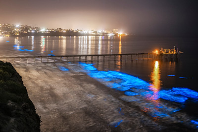 Bioluminescent Tide at Scripps Pier