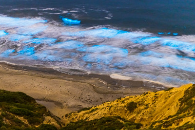 Black's Beach Bioluminescence.