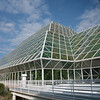 Rain Forest structure.