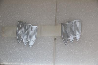 Hood ornament inserts after polishing