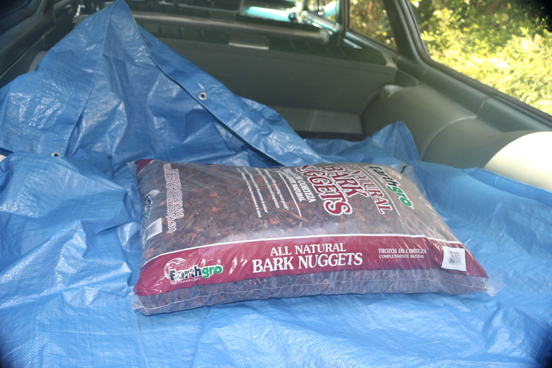 Biquette brings home one more bag of bark nuggets
