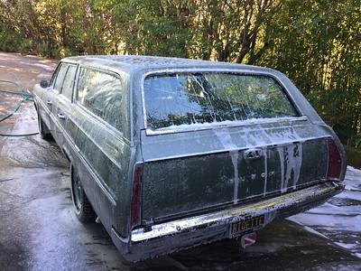 Biquette covered in soap foam - back