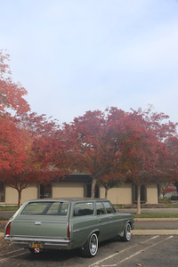 Biquette and fall trees - starboard rear portrait
