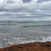 Ano Nuevo Point and Island, on the Ano Nuevo CBC, 2012-12-29