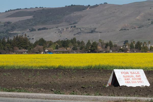 2012-02-25 South Santa Clara County (PAAS)