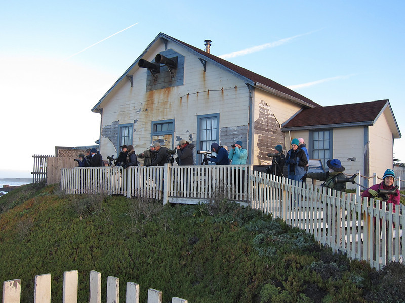 The Class at Pigeon Point Lighthouse