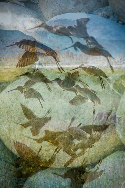 Tufa Flock