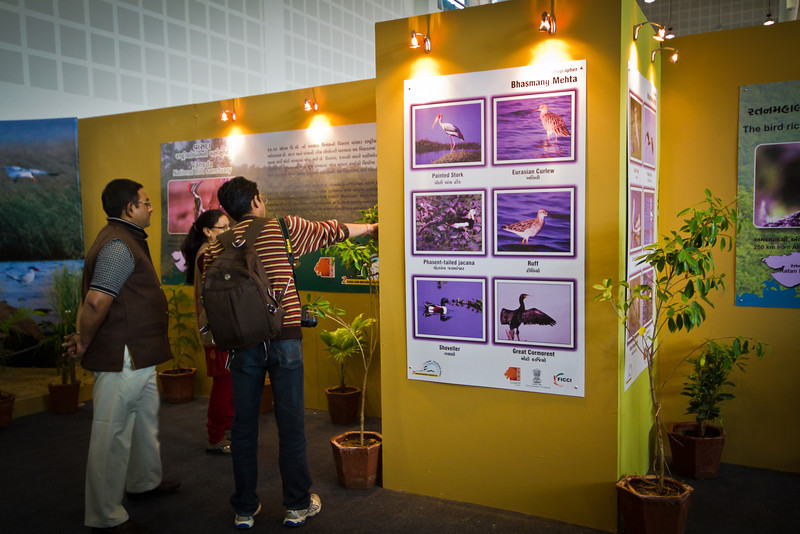 About 18 bird photos of Bhasmang were included in the exhibit.