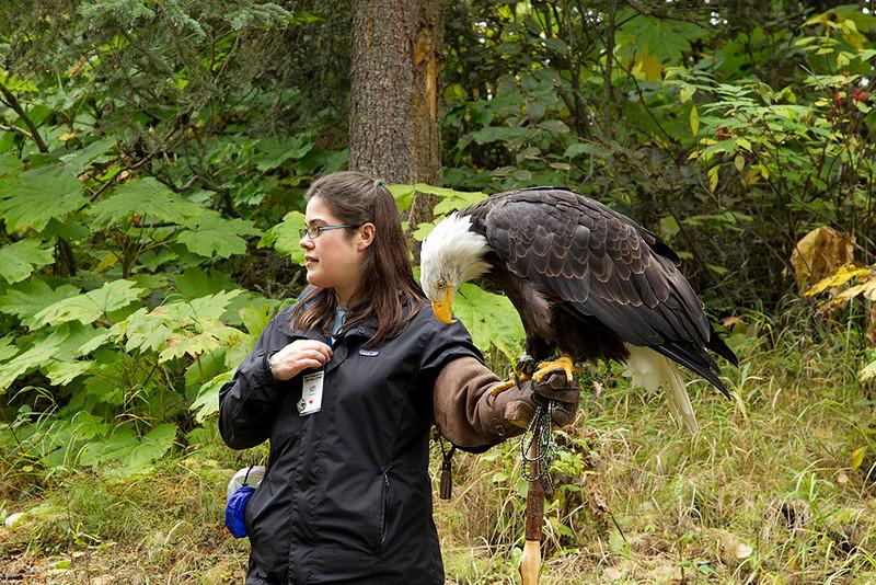 IMG_6686  Presenter Lisa Pajot with Petra the Bald Eagle