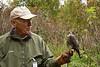 IMG_6784  Presenter Wayne Rush with Jewel the Merlin