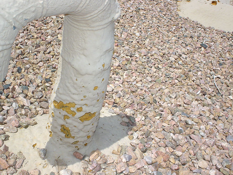 10 year old gravel-foam roof in El Dorado.  Some bird and bee damage at coated section of roof.  (photo taken 2005)