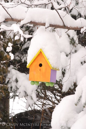 Birdhouses in Winter