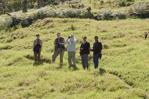 The group birding the Western Highlands