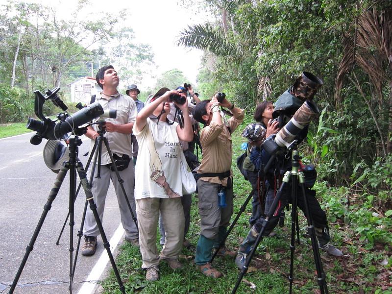 Birders from Thailand