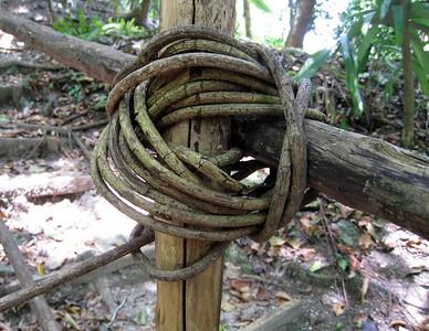 Nature's Rope