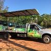 The Camian Lobo-Guara