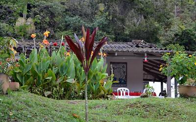 The comfortable Piha Reserve Lodge