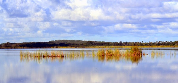 Tortuguero Lagoon Nature Reserve