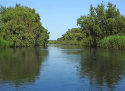 Danube Delta scenery